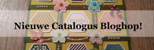 nieuwecatblog